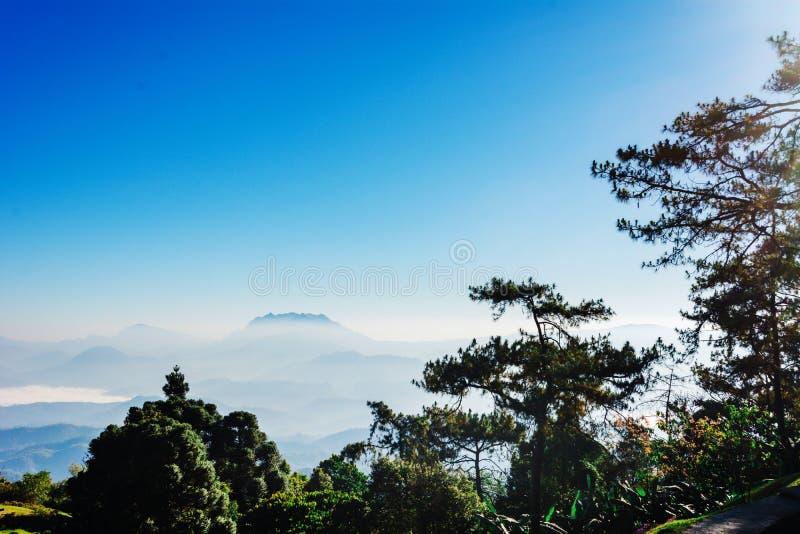 Siktspunkt av trädet, dimma och berget scen äter Huai Nam Dang National Park, Chingmai arkivbilder