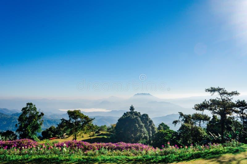 Siktspunkt av trädet, dimma och berget scen äter Huai Nam Dang National Park, Chingmai fotografering för bildbyråer