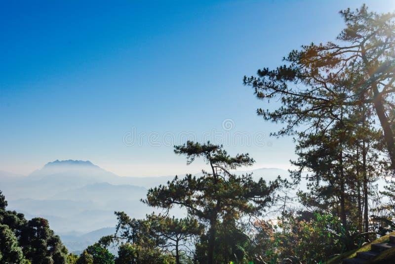 Siktspunkt av trädet, dimma och berget scen äter Huai Nam Dang National Park, Chingmai royaltyfria foton