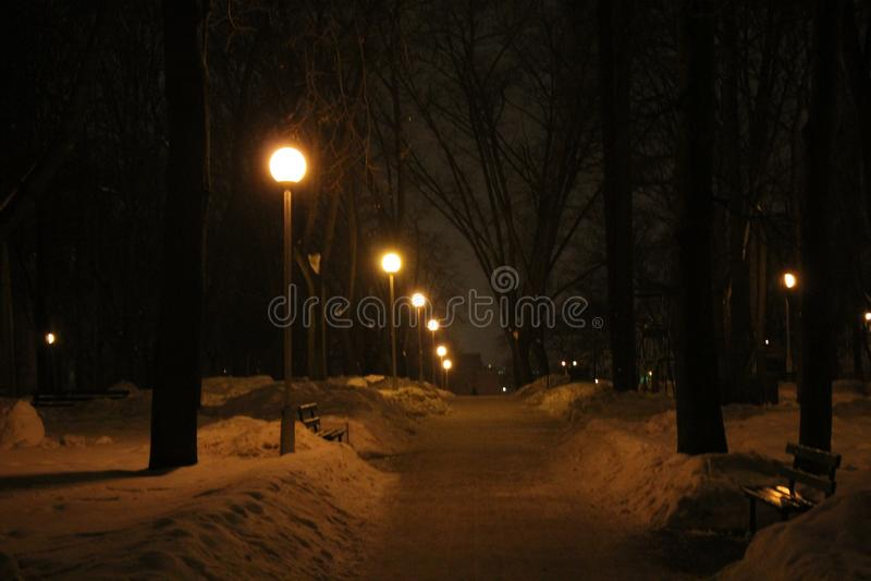 Silêncio do inverno na primavera foto de stock