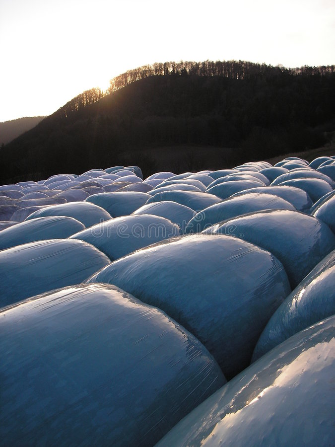 Download Silage Foil Royalty Free Stock Image - Image: 1767136