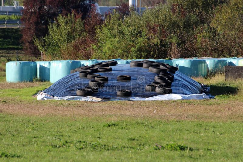 Silage pile of fermented high moisture stored fodder covered with thick nylon and used car tyres with hay bales wrapped in plastic. Silage pile of fermented high stock photography