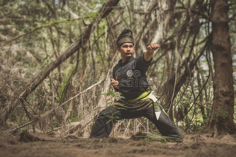 Silat stockfotos
