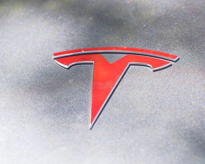 Silberne Autohaubenabdeckung mit Tesla-Logonahaufnahme stockfoto