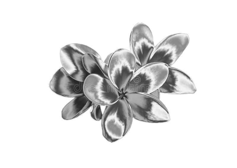 Silberne Blume stockfotos