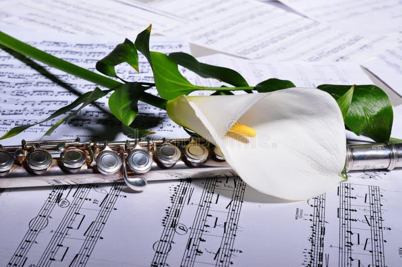 Silberne Flöte und Noten, Blume lizenzfreies stockfoto