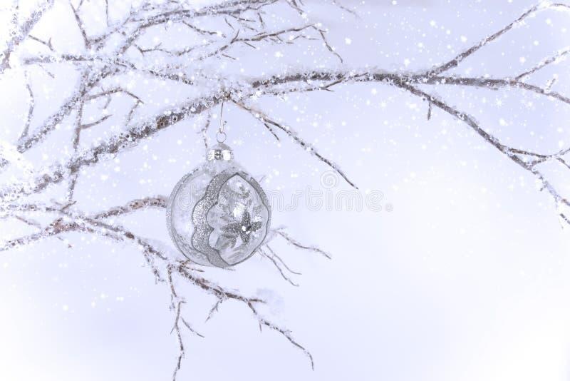 Silberne u. freie Weihnachtsverzierung auf Zweig stockbild
