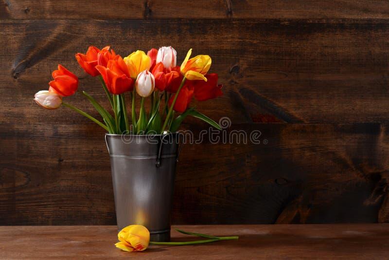 Silberner Eimer Tulpen stockbilder