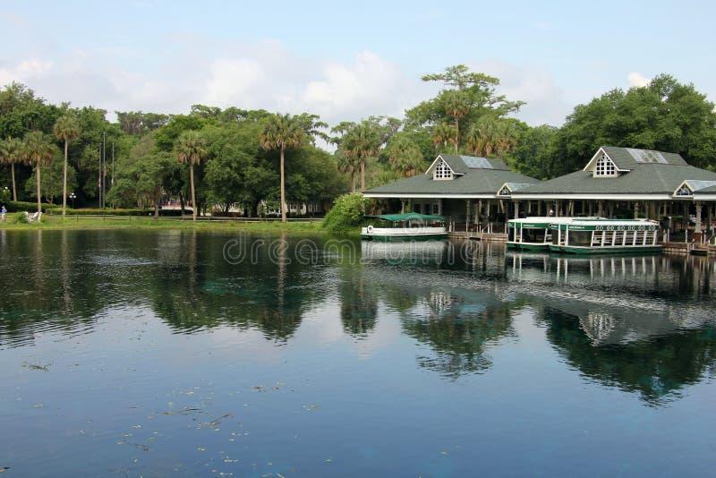 Silberner Fluss Florida lizenzfreie stockfotos