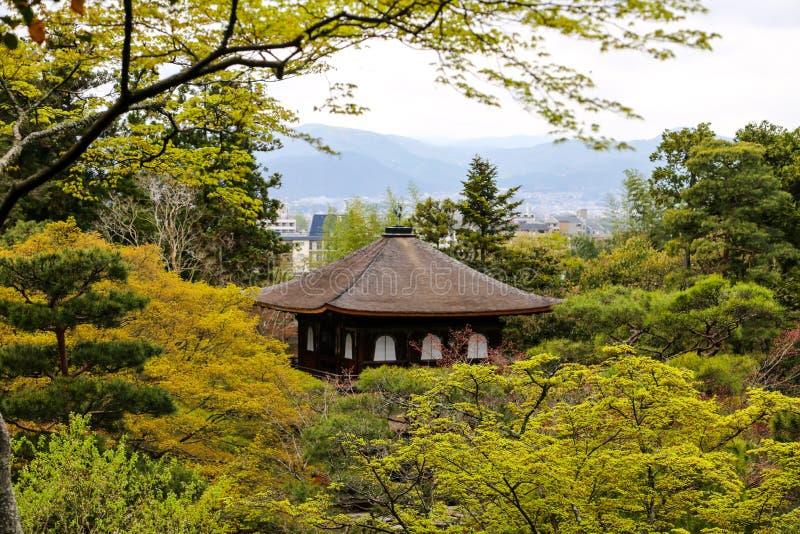 Silbernes Pavillion in Kyoto, Japan unter Bäumen stockbild