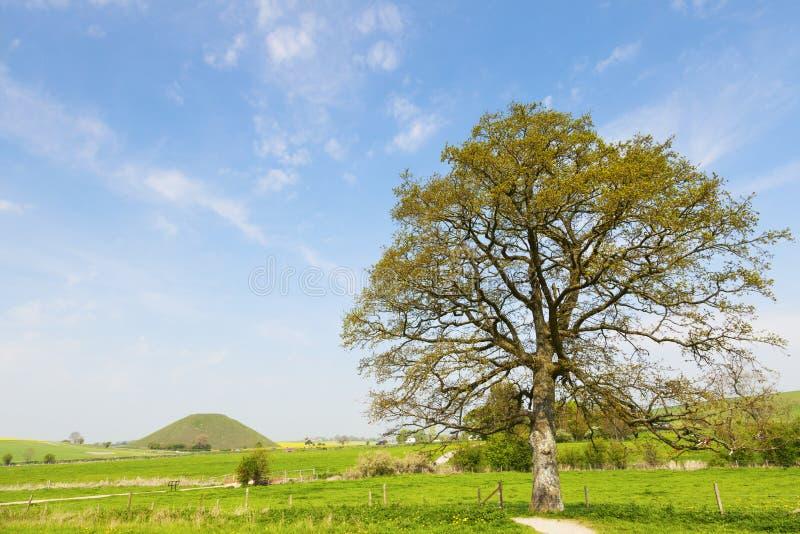 Silbury wzgórze Wiltshire Anglia obraz royalty free
