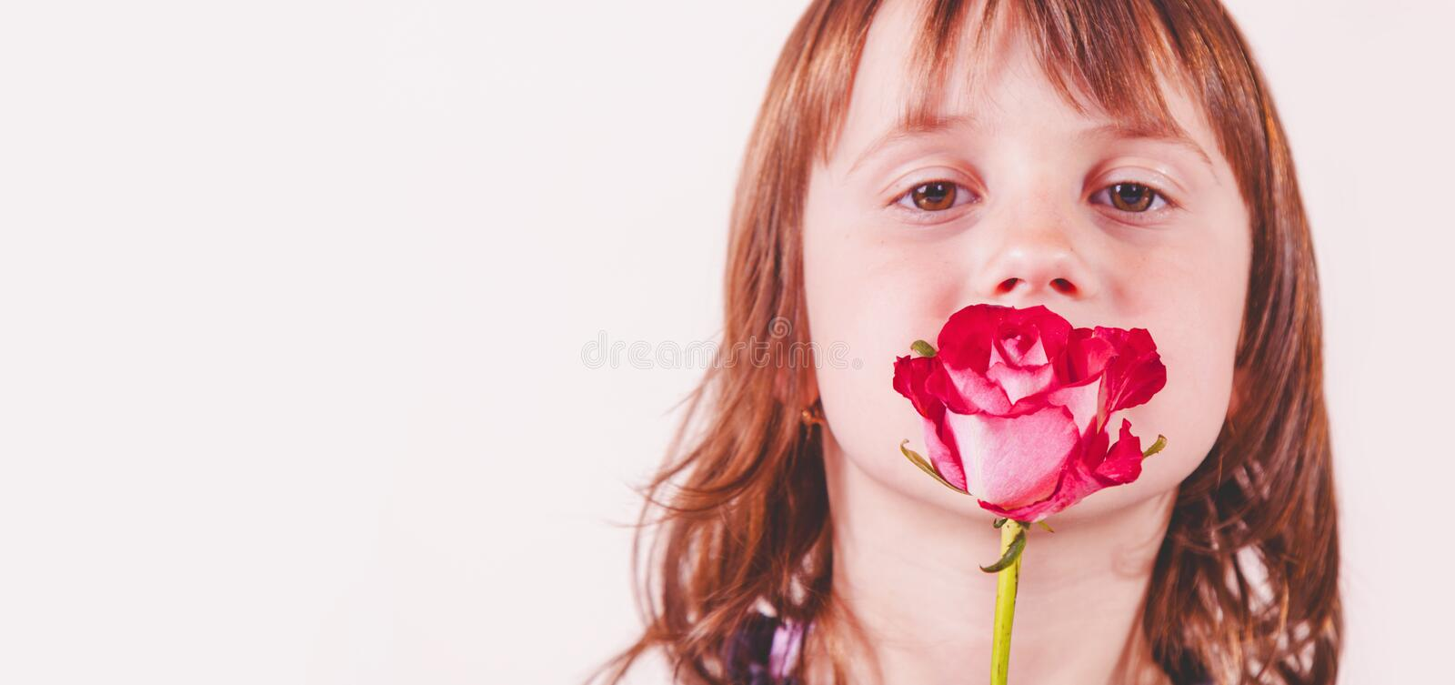 Silence is gold concept. Beautiful little child girl holding rose in her mouth stock photos