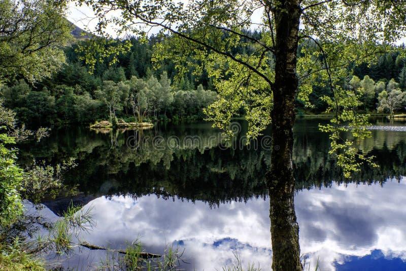 Silencio del lago imágenes de archivo libres de regalías