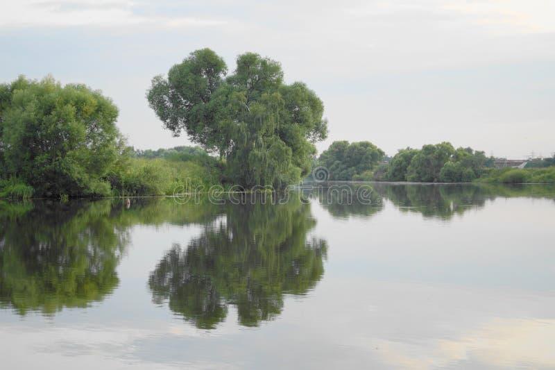 Silencioso alise a superfície da água no rio foto de stock royalty free