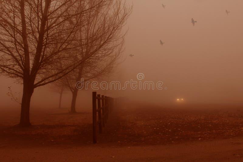 Download Silent fog. stock image. Image of burnt, distance, climate - 35488795