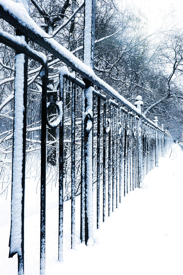 Download Silent Snow-covered Urban Park In Winter Stock Image - Image: 24357077