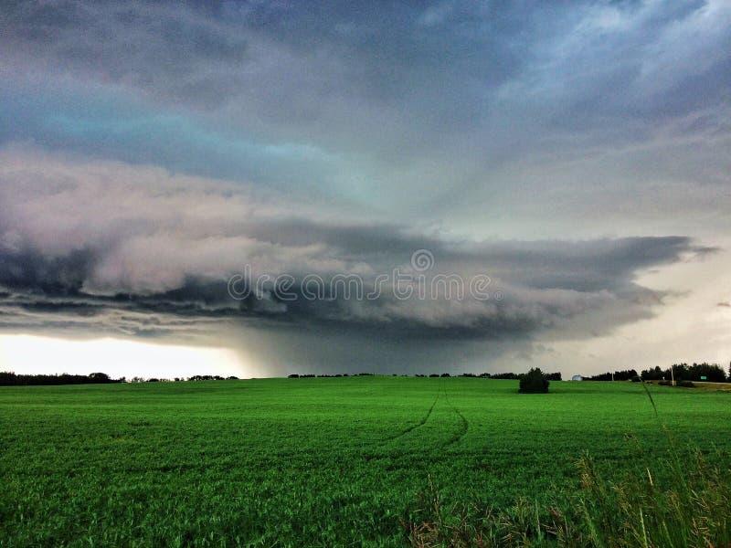 Silenzio prima della tempesta immagine stock