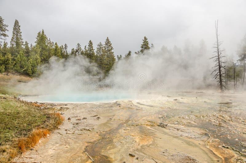Silex Sprng w Yellowstone fotografia royalty free