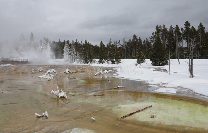 Silex wiosna w Niskim gejzeru basenie w Yellowstone parku narodowym w zimie obraz royalty free