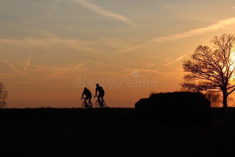 Silhouet των συναγωνιμένος ποδηλατών σε έναν χρυσό ουρανό ηλιοβασιλέματος στοκ φωτογραφίες