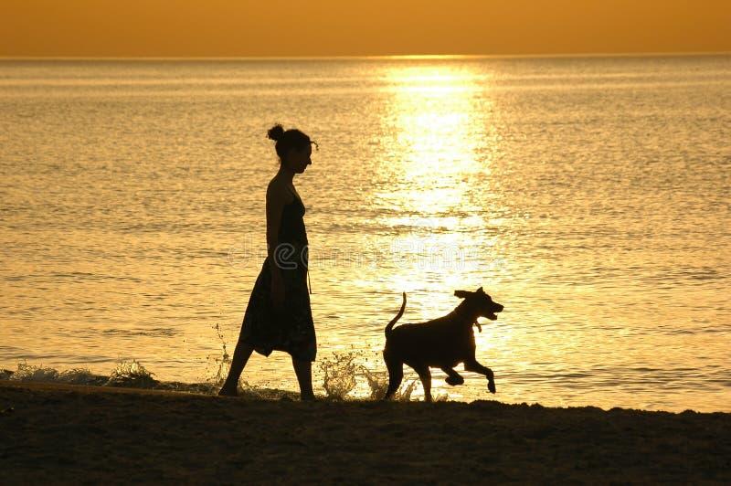 Silhouet bij zonsondergang royalty-vrije stock afbeelding