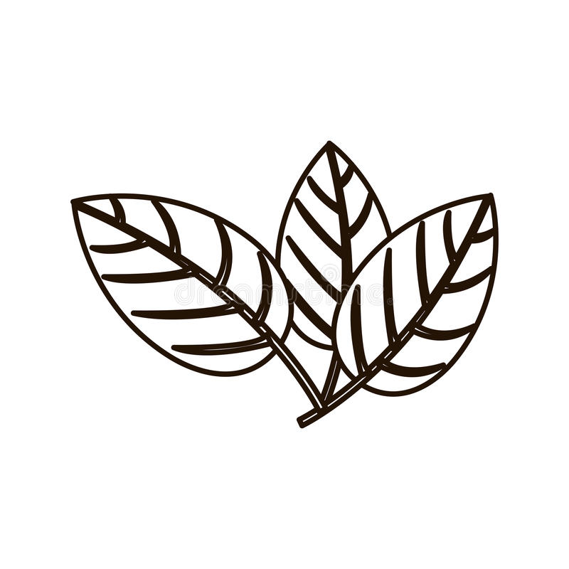 Silhouet drie bladeren met vertakkingen stock illustratie
