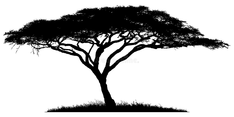Silhouet van de boom-acacia vector illustratie