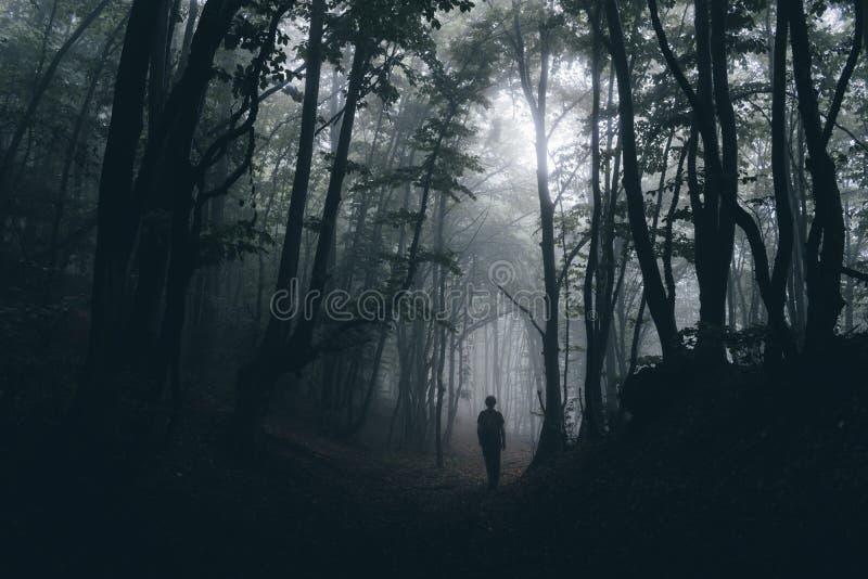 Silhouet van de mens in donker achtervolgd hout op mistige Halloween-nacht stock foto's