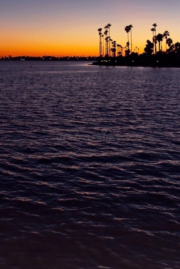 Silhouet van de Palmen van Californië bij schemer stock afbeelding