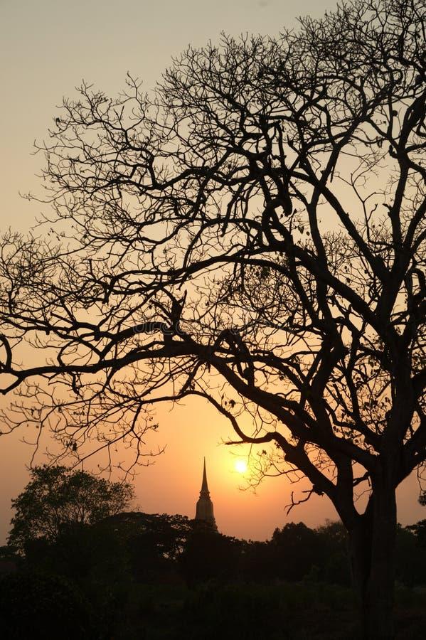 Silhouet van de scènes van de Pagodeschemering in het historische Park van Ayutthaya stock afbeelding