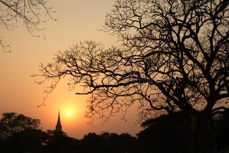 Silhouet van de scènes van de Pagodeschemering in het historische Park van Ayutthaya stock foto
