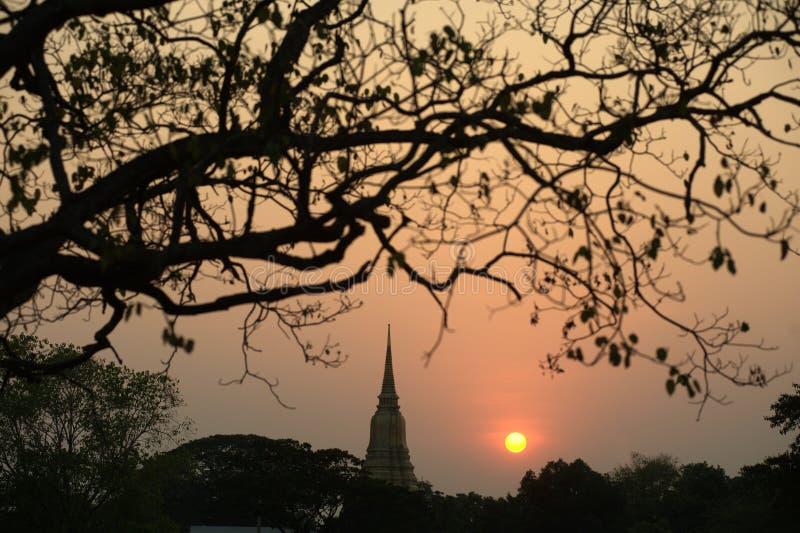 Silhouet van de scènes van de Pagodeschemering in het historische Park van Ayutthaya royalty-vrije stock foto