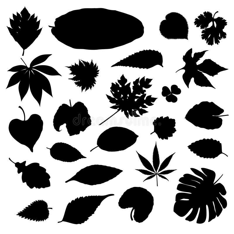 Silhouet van diverse soorten bladeren stock illustratie