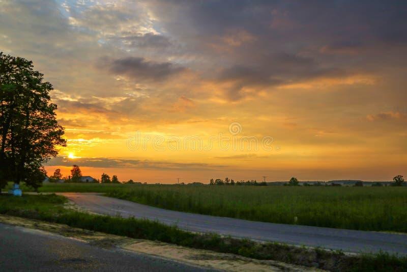 Silhouet van een eenzame boom op een open gebied tijdens zonsondergang met een mooie hemel royalty-vrije stock afbeeldingen