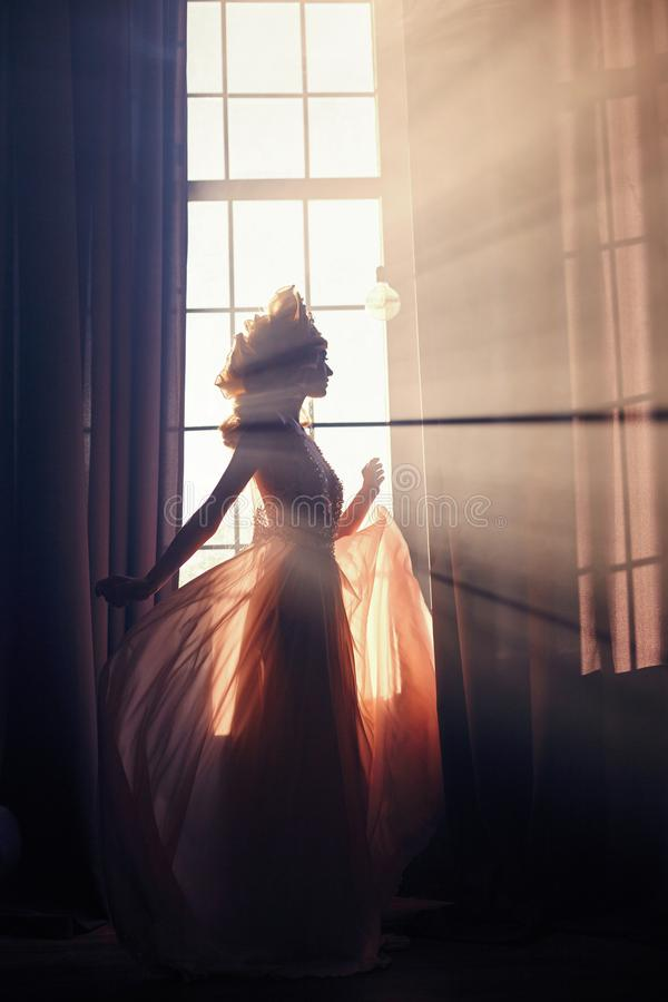 Silhouet van een geheimzinnige feevrouw op de achtergrond van stock foto's