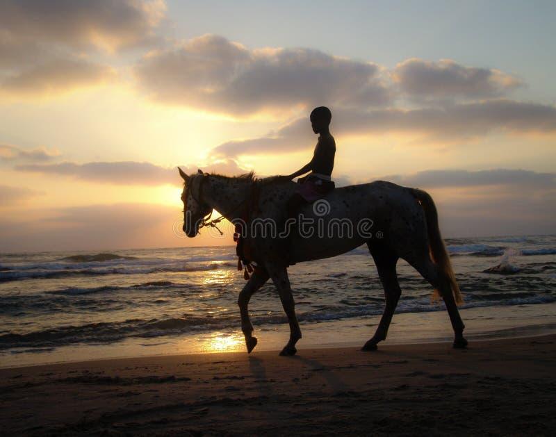 Silhouet van een jonge jongen die een paard berijden bij zonsondergang op een zandig strand onder een bewolkte warme hemel royalty-vrije stock afbeelding