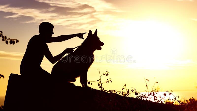 Silhouet van een jonge mens die met een hond op het gebied bij zonsondergang lopen, jongen met zijn huisdier die van aard, profie royalty-vrije stock foto