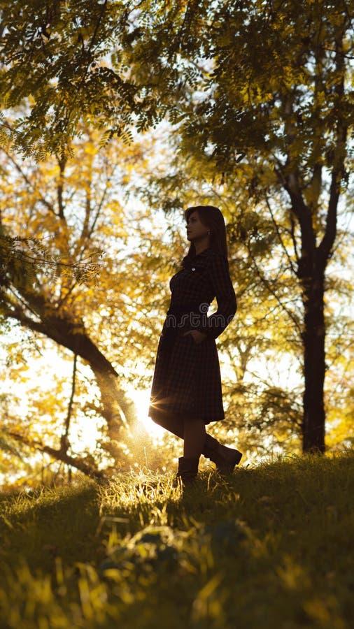 Silhouet van een jonge vrouw die op heuvel bij zonsondergang stijgen, cijfermeisje in het de herfstlandschap in een kleding, het  royalty-vrije stock afbeelding