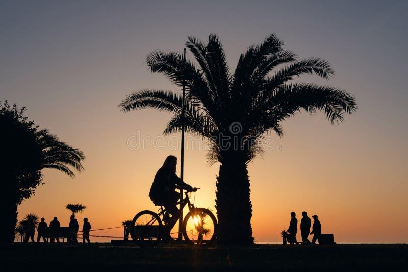 Silhouet van een meisje die op een fiets berijden stock afbeelding