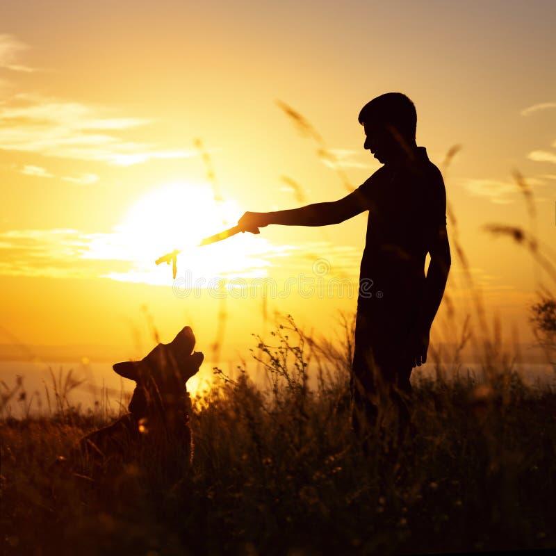 Silhouet van een mens die met een hond op het gebied bij zonsondergang in openlucht lopen, jongen het spelen met huisdier, concep royalty-vrije stock fotografie