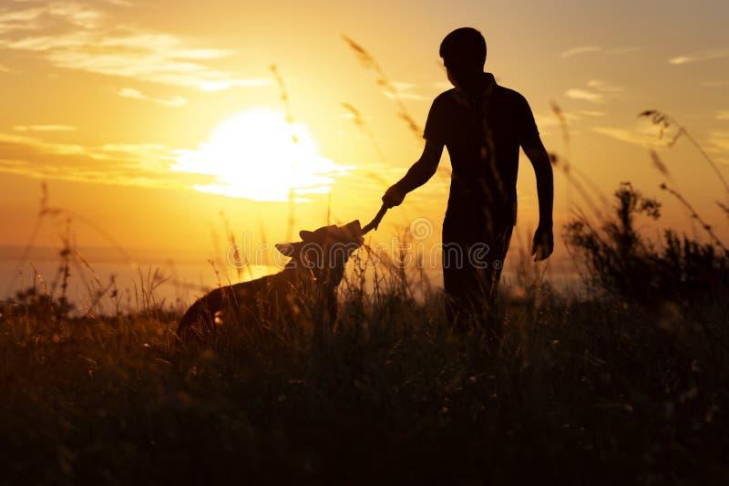 Silhouet van een mens die met een hond op het gebied bij zonsondergang in openlucht lopen, jongen het spelen met huisdier, concep stock afbeelding