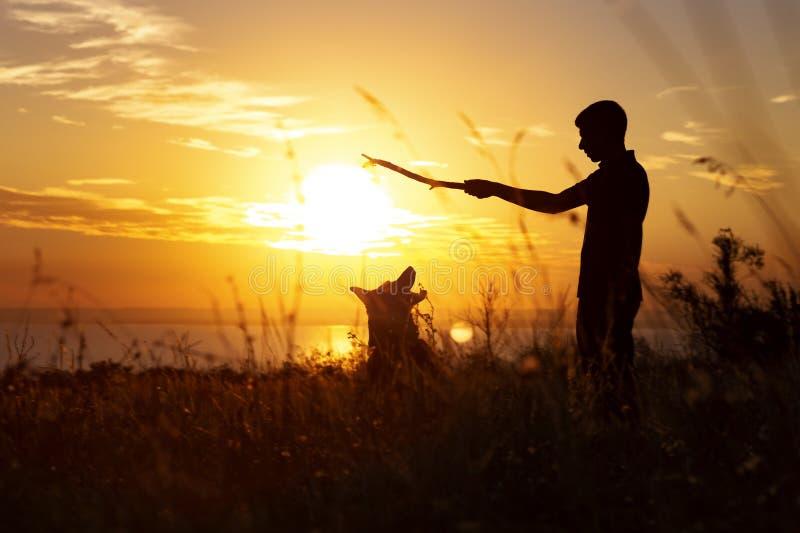 Silhouet van een mens die met een hond op het gebied bij zonsondergang in openlucht lopen, jongen het spelen met huisdier, concep royalty-vrije stock afbeelding