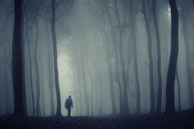 Silhouet van een mens in een mistig bos stock afbeelding