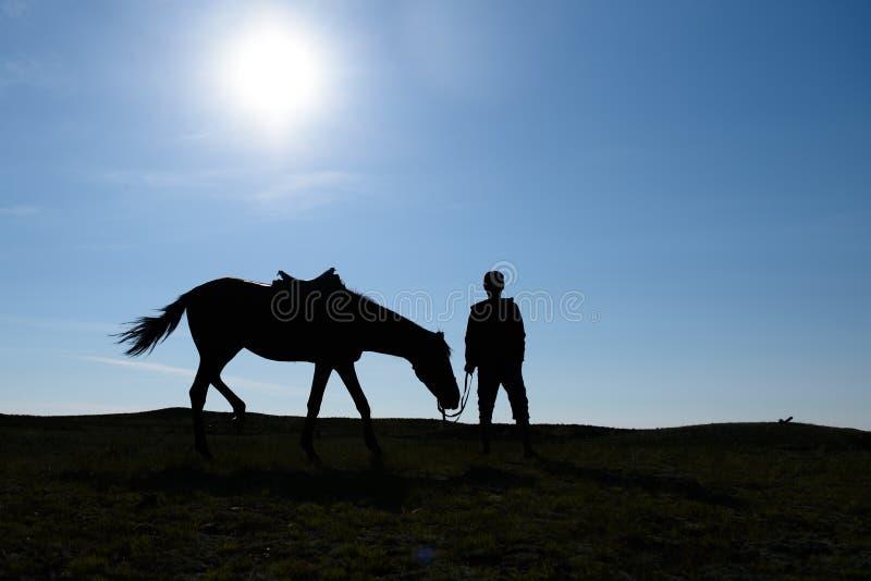 Silhouet van een mens en een paard tegen de hemel stock fotografie