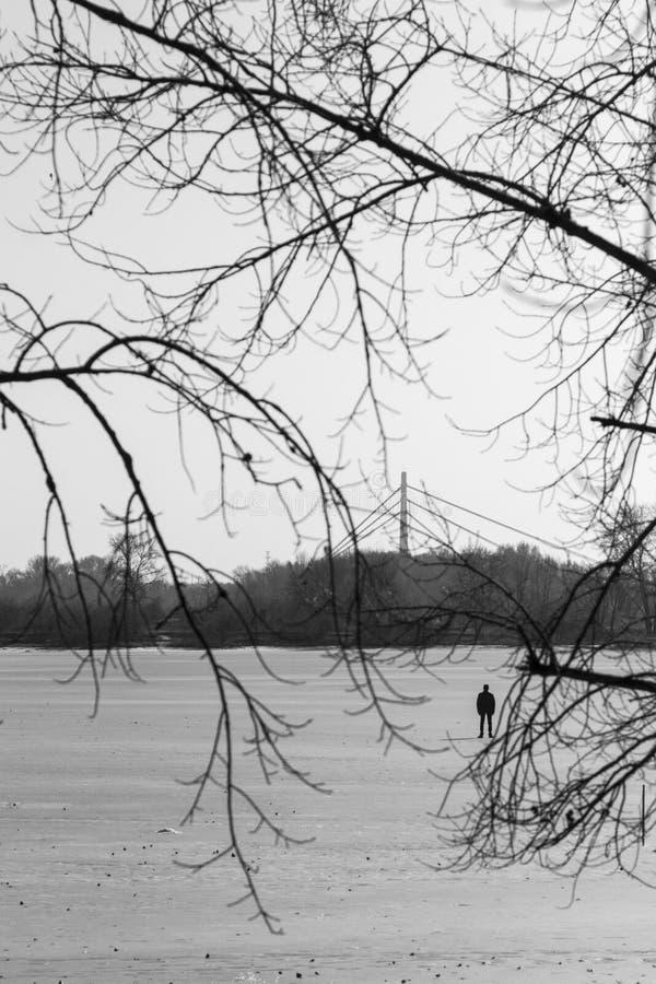 Silhouet van een mens op een sneeuwgebied, takken van bomen in de voorgrond Zwart-wit beeld royalty-vrije stock foto