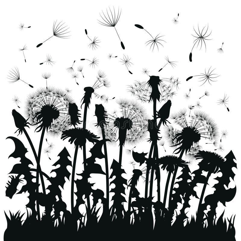 Silhouet van een paardebloem met vliegende zaden Zwarte contour van een paardebloem Zwart-witte illustratie van een bloem vector illustratie