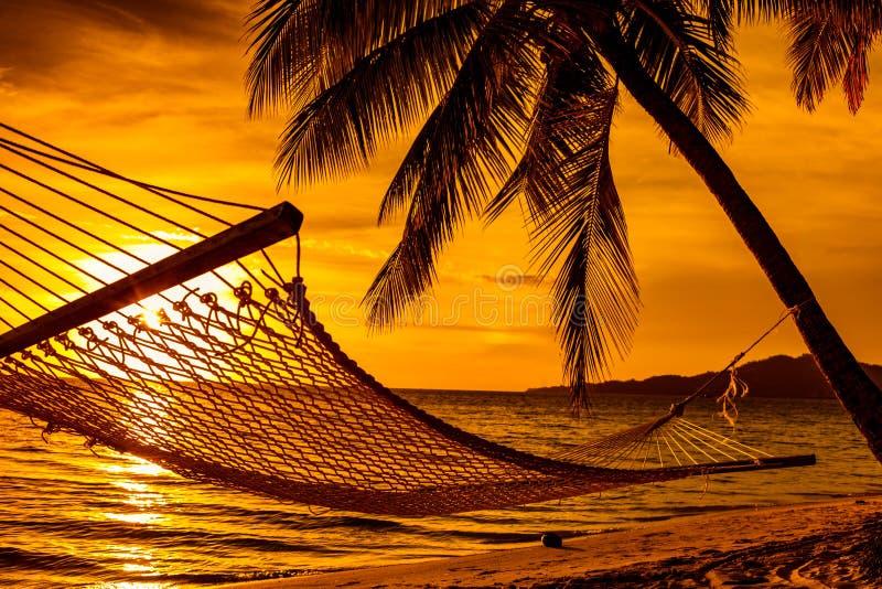 Silhouet van hangmat en palmen op een strand bij zonsondergang stock fotografie