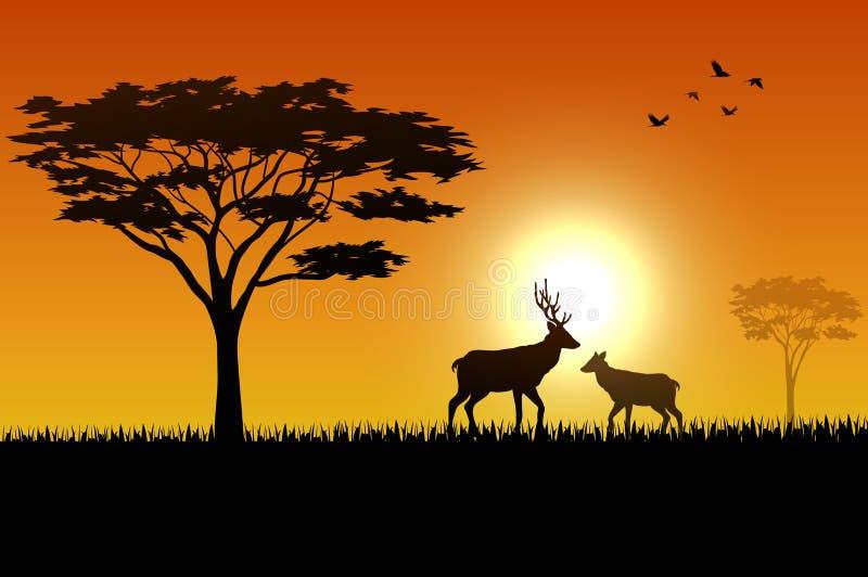Silhouet van herten bij savanah vector illustratie