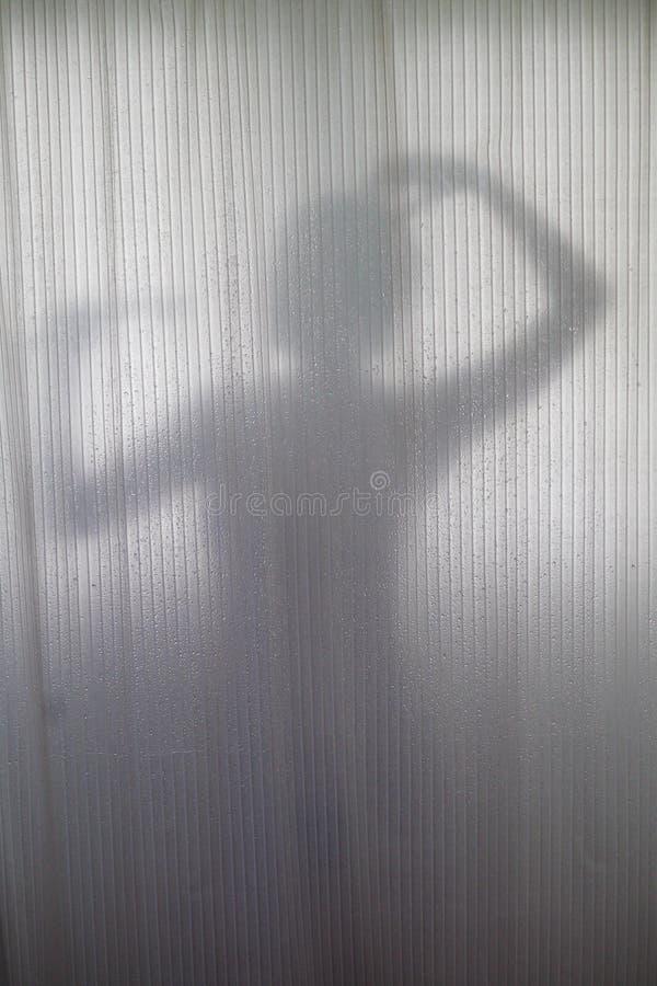 Silhouet van het Overgieten van de Vrouw stock foto's