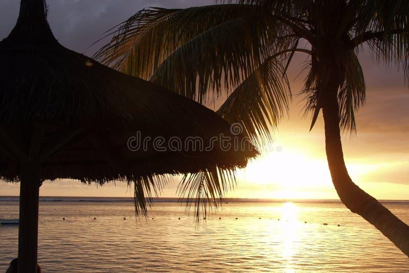 Silhouet van hut en palm als zonreeksen over de oceaan stock afbeeldingen